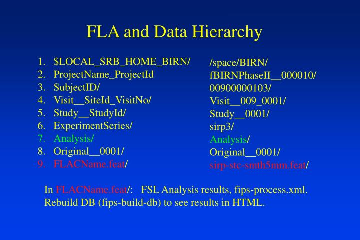 FLA and Data Hierarchy