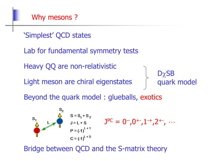 Why mesons ?