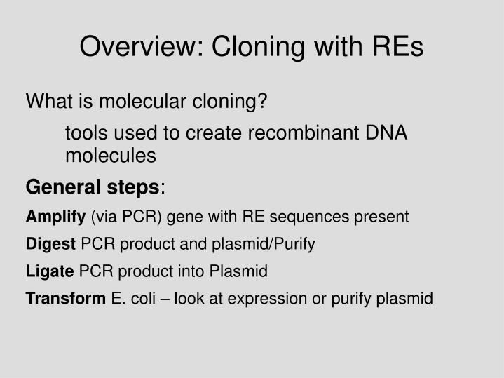 Overview: Cloning with REs