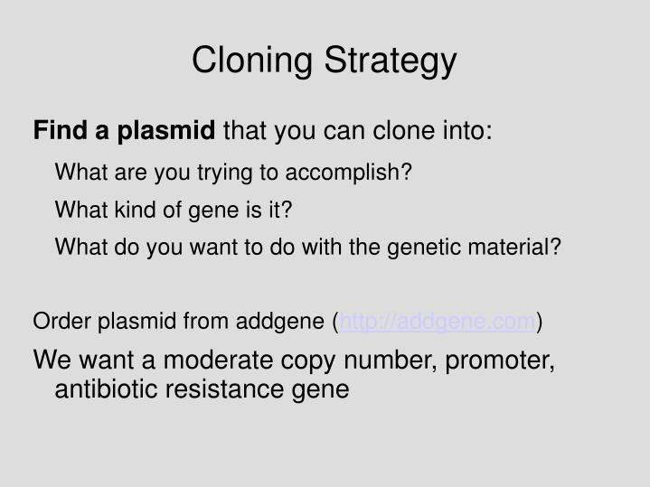 Cloning Strategy
