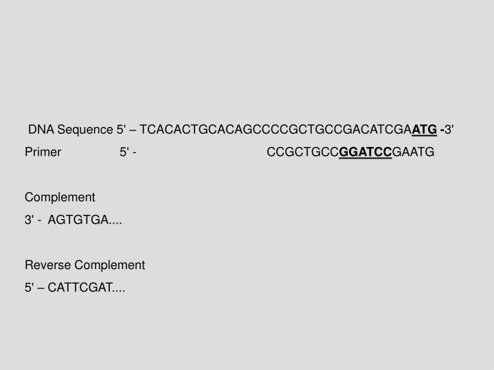 DNA Sequence 5' – TCACACTGCACAGCCCCGCTGCCGACATCGA