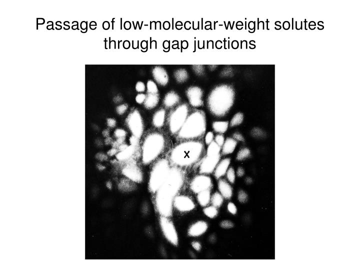 Passage of low-molecular-weight solutes through gap junctions