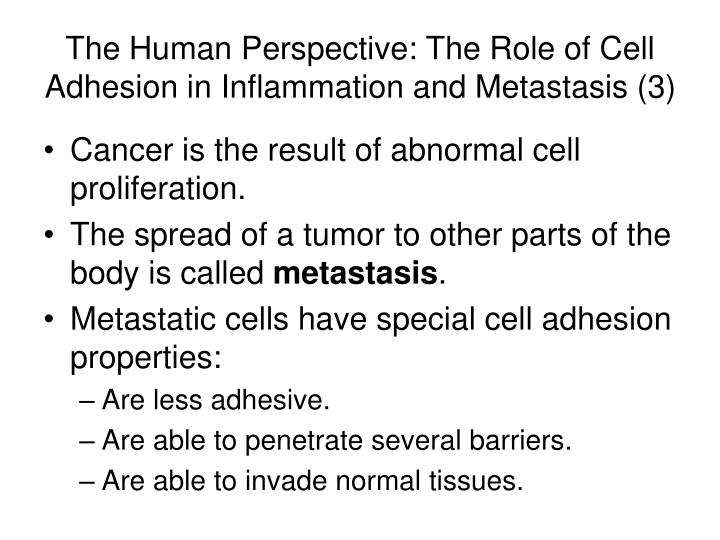 The Human Perspective: The Role of Cell Adhesion in Inflammation and Metastasis (3)