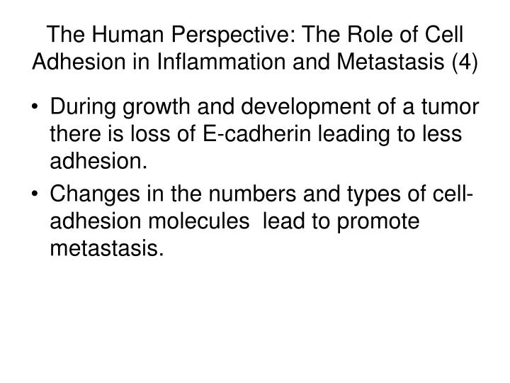 The Human Perspective: The Role of Cell Adhesion in Inflammation and Metastasis (4)