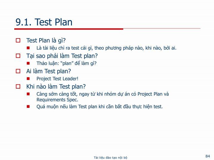 9.1. Test Plan