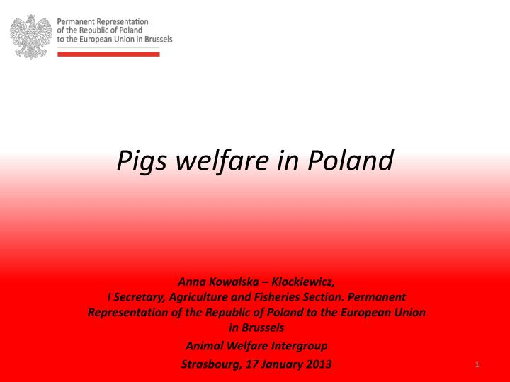 Pigs welfare in poland
