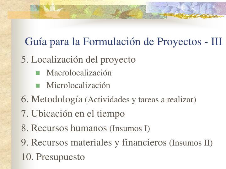 Guía para la Formulación de Proyectos - III