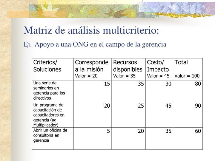 Matriz de análisis multicriterio: