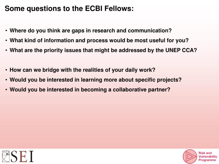 Some questions to the ECBI Fellows: