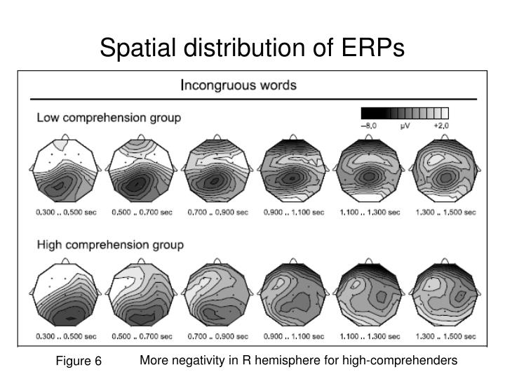 Spatial distribution of ERPs