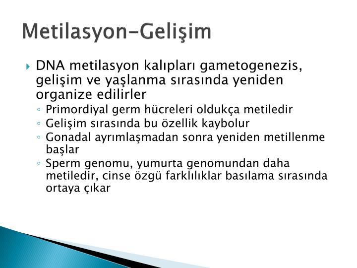 Metilasyon