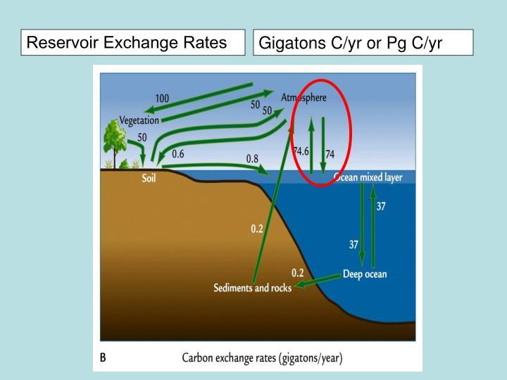 Reservoir Exchange Rates
