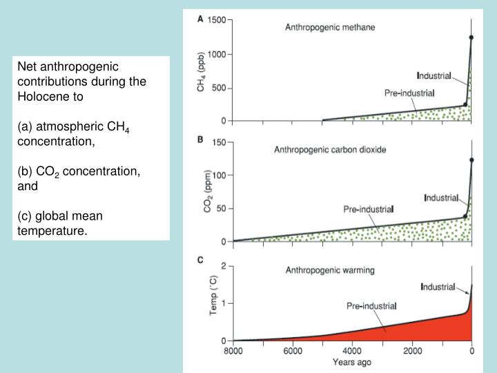 Net anthropogenic contributions during the Holocene to