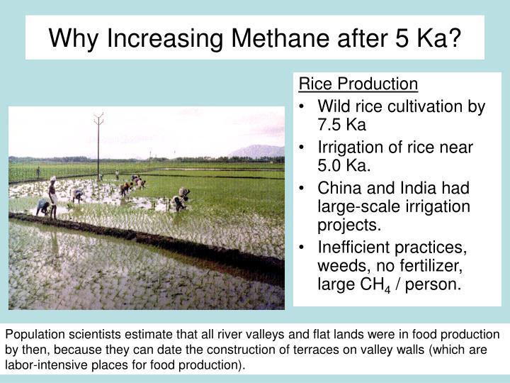 Why Increasing Methane after 5 Ka?