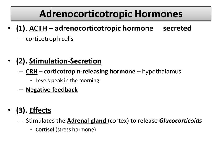 Adrenocorticotropic