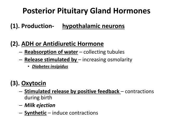 Posterior Pituitary Gland Hormones