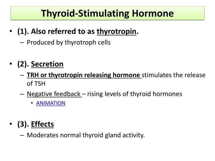 Thyroid-Stimulating Hormone