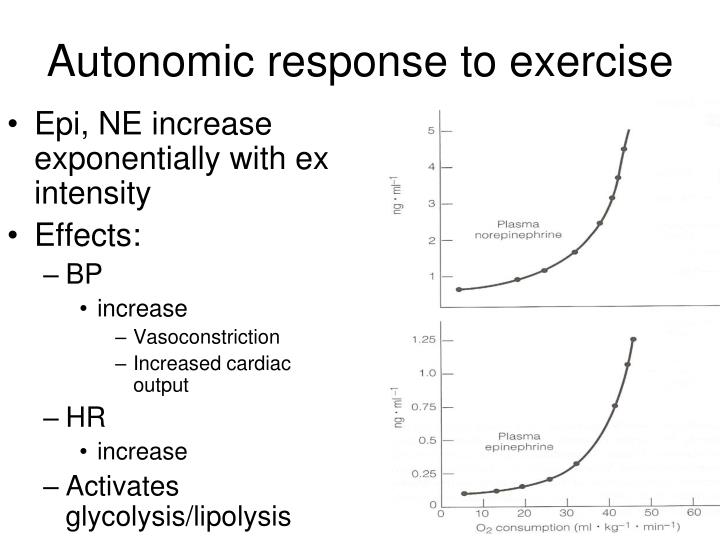 Autonomic response to exercise