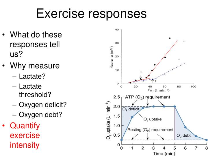Exercise responses