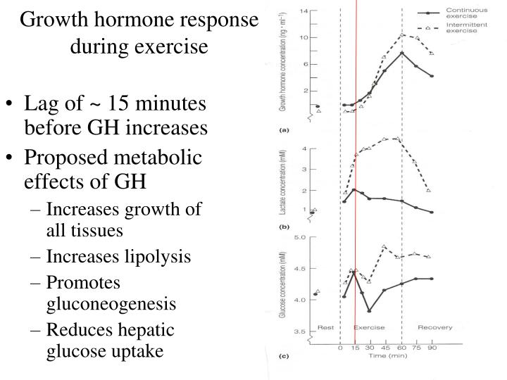 Growth hormone response during exercise