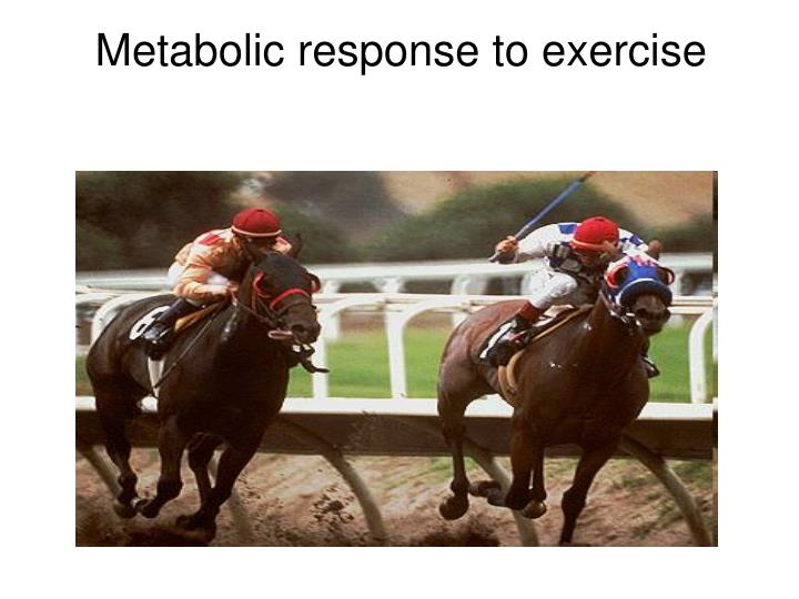 Metabolic response to exercise