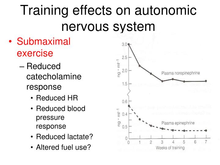Training effects on autonomic nervous system