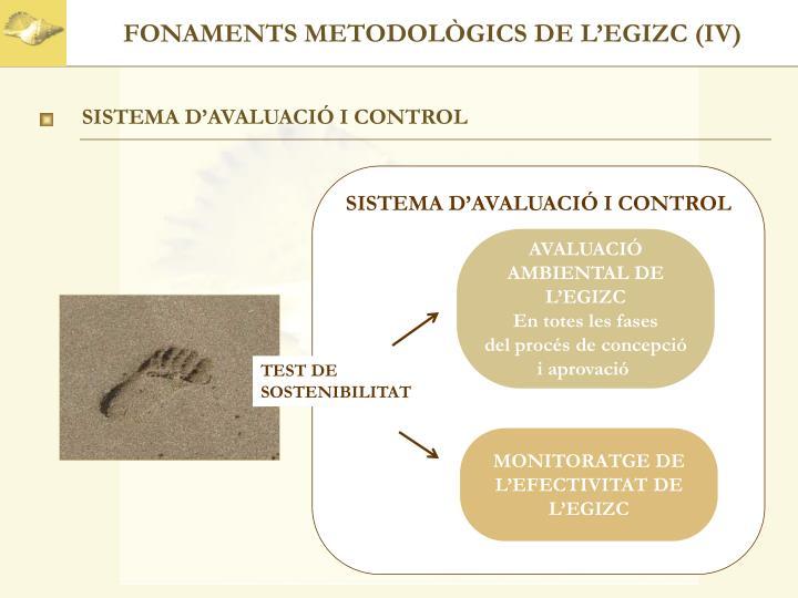 FONAMENTS METODOLÒGICS DE L'EGIZC (IV)