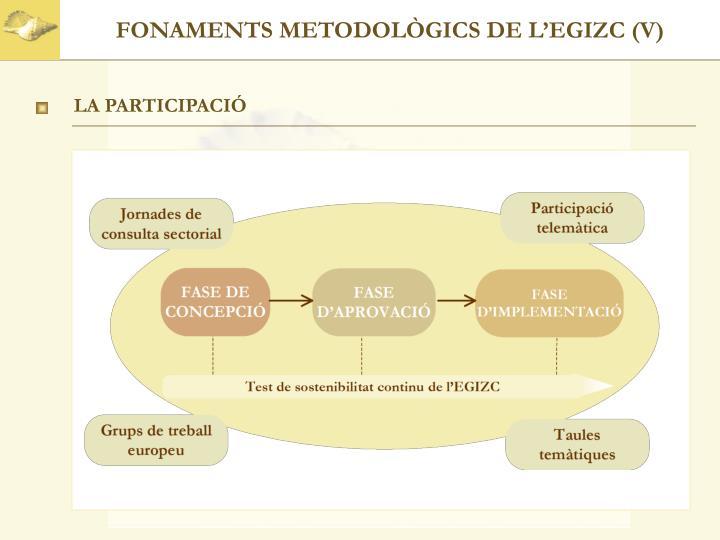 FONAMENTS METODOLÒGICS DE L'EGIZC (V)