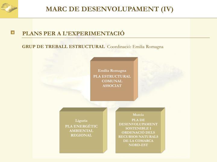 MARC DE DESENVOLUPAMENT (IV)