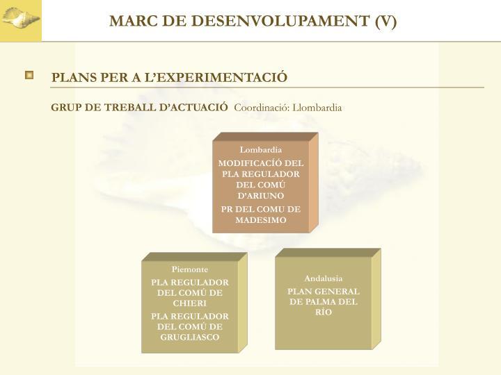 MARC DE DESENVOLUPAMENT (V)