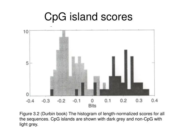 CpG island scores