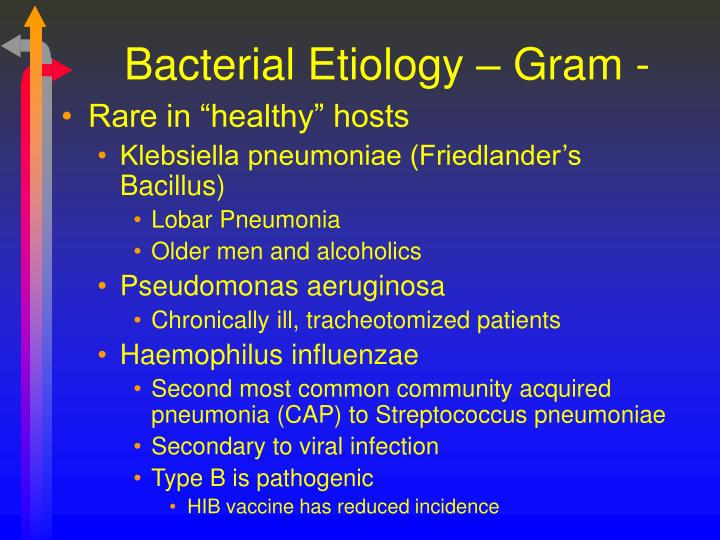 Bacterial Etiology – Gram -