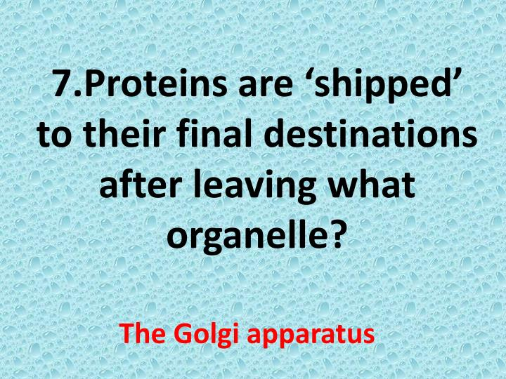 7.Proteins are 'shipped' to their final destinations after leaving what organelle?
