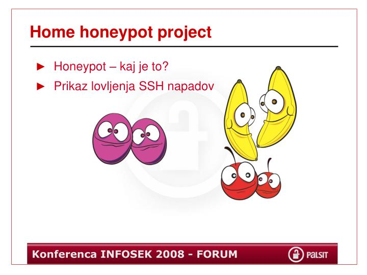 Home honeypot project