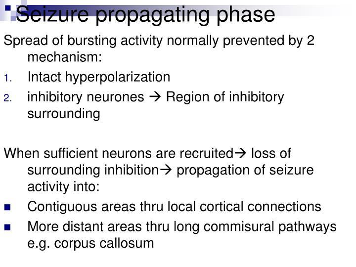Seizure propagating phase