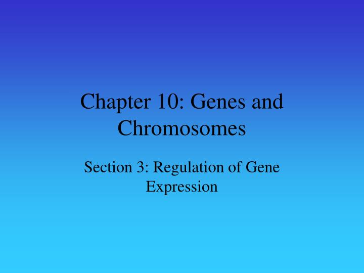 Chapter 10: Genes and Chromosomes