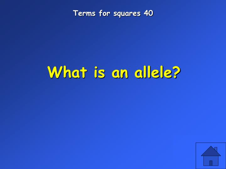 Terms for squares 40