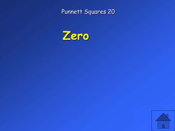 Punnett Squares 20