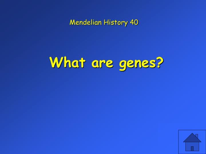 Mendelian History 40
