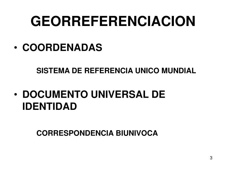 GEORREFERENCIACION