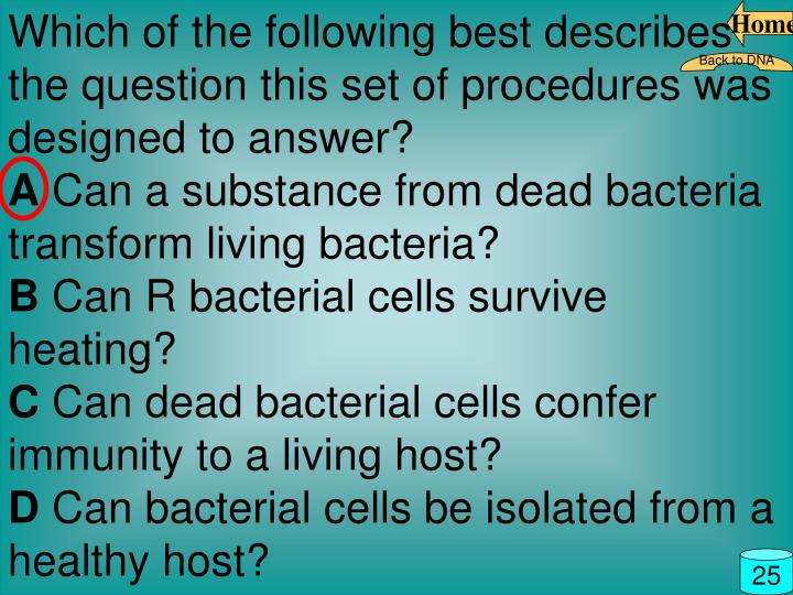 Which of the following best describes the question this set of procedures was designed to answer?