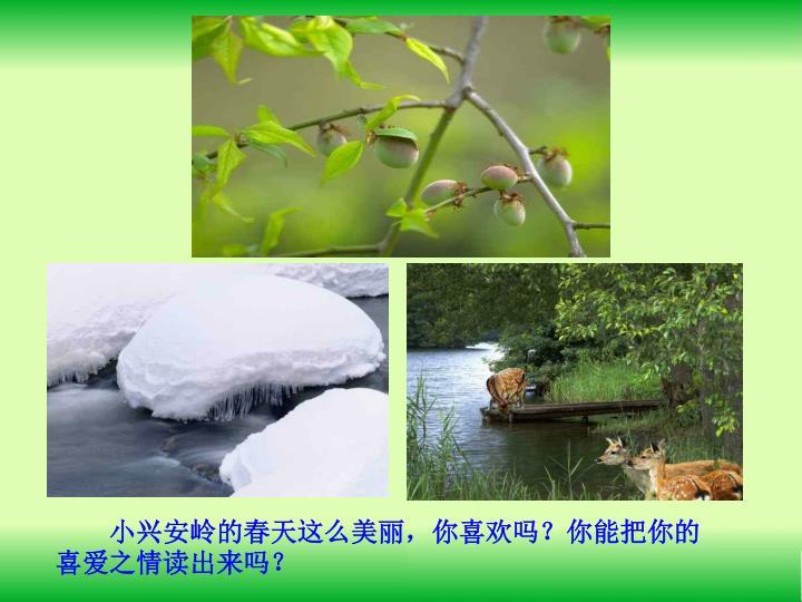 小兴安岭的春天这么美丽,你喜欢吗?你能把你的喜爱之情读出来吗?