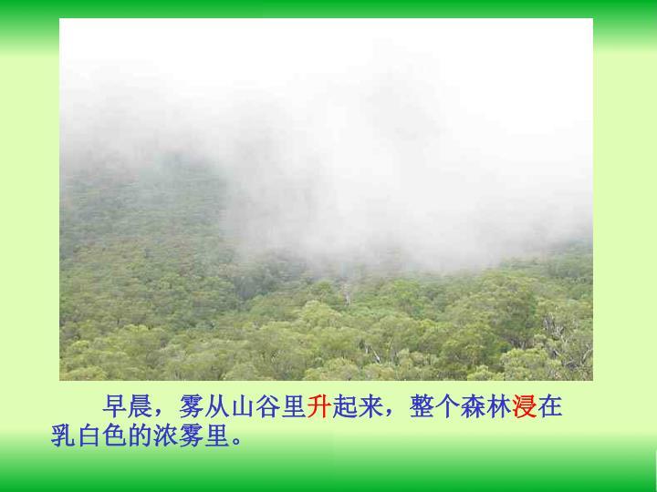 早晨,雾从山谷里