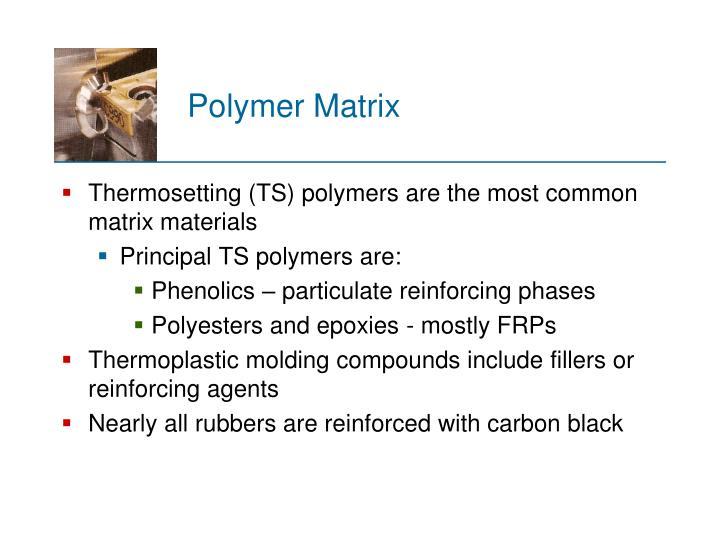Polymer Matrix