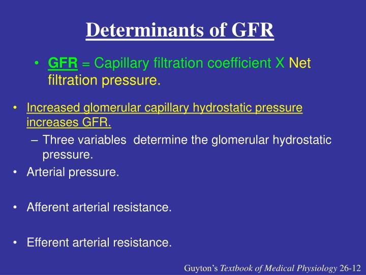 Determinants of GFR