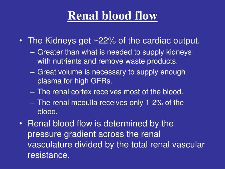 Renal blood flow