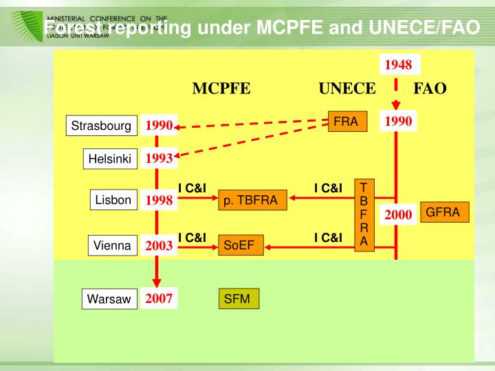 Forest reporting under mcpfe and unece fao