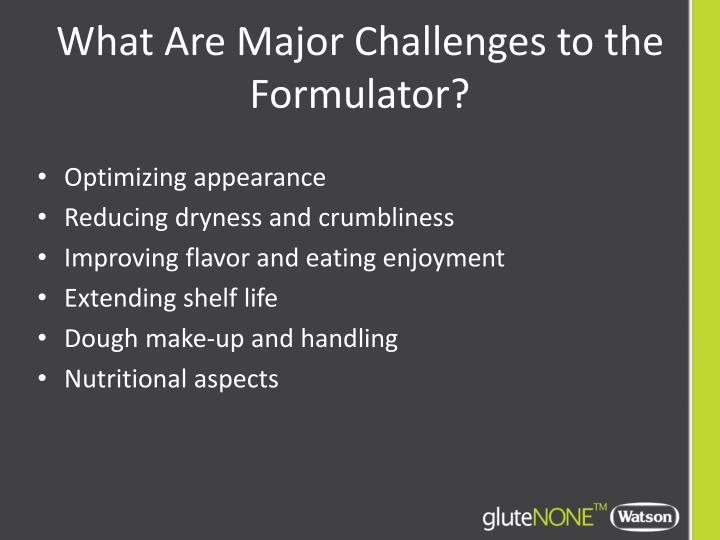What Are Major Challenges to the Formulator?