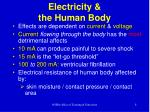 electricity the human body