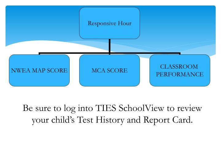 Be sure to log into TIES SchoolView to review your child's Test History and Report Card.